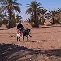 Jeremy riding a donkey