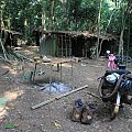 Baka forest camp