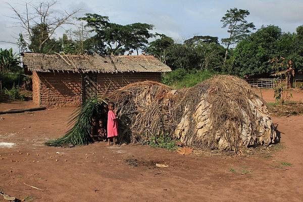 Bayaka houses