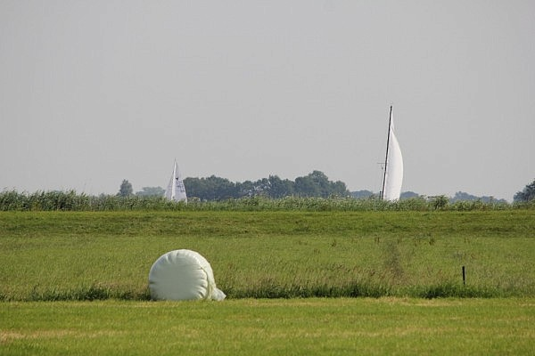 Sail boats in the field