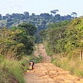 Congolese countryside