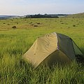 Bush camping in the green fields