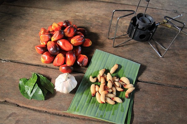 Cooking a local dinner with palm grubs