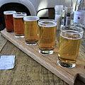 Beer tasting in Stellenbosch