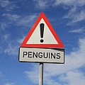 Warning for penguins