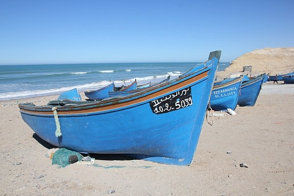 Western Saharan fishing boats
