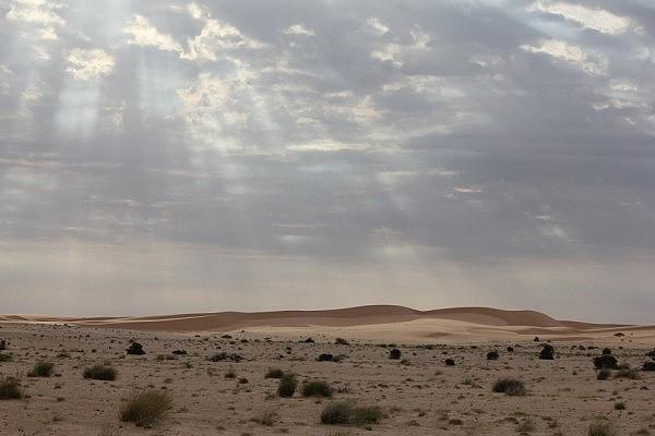 Landscape of Mauretania