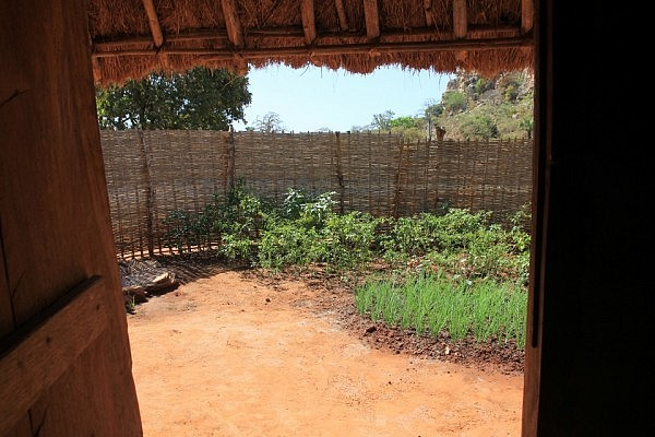 Integrated garden